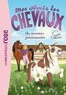 Mes amis les chevaux, tome 1 : Un nouveau pensionnaire par Thalmann