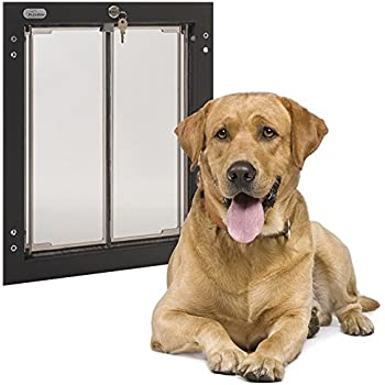 Security Issues With Large Dog Door