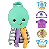 lil baby dr - Silli Chews 2 In 1 Octopus Security Buddy Soft Plush Baby Toy and Silicone Soft Teething Pain Relief Teether for Babies Infants and Toddlers PVC, Phthalate, Lead, and BPA Free Chew Toy Mint Green