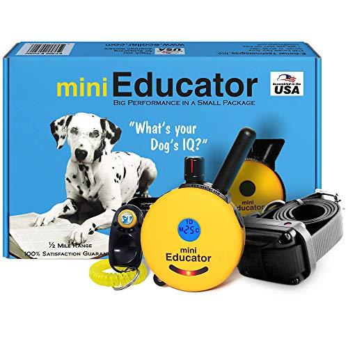Educator E-Collar and Mini Training Kit