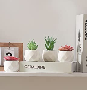 ZENMAG Fake Succulents Set of 4 Mini Succulents Plants Artificial in White Ceramic Pots for Office Home Living Room Desk Shelf Bathroom Decor Clearance