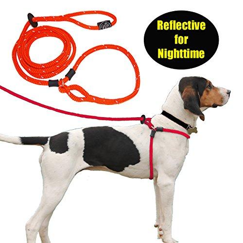 Harness Lead Escape Resistant, Reduces Pull Dog Harness, Medium/Large, Orange Reflective