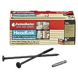 FastenMaster FMHLGM006-50 HeadLOK Heavy-Duty
