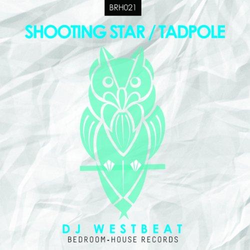Shooting Star / Tadpole (Tadpoles Stars)