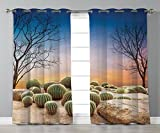 Thermal Insulated Blackout Grommet Window Curtains,Cactus Decor,Cactus Balls with Spikes on a Montain Desert Sand Mexican Landscape Photo,Multicolor,2 Panel Set Window Drapes,for Living Room Bedroom K