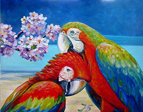 (Macaw Parrots