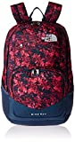 The North Face Unisex Wise Guy Backpack Gem Pink Halftone Mountain Print/Shady Blue One Size