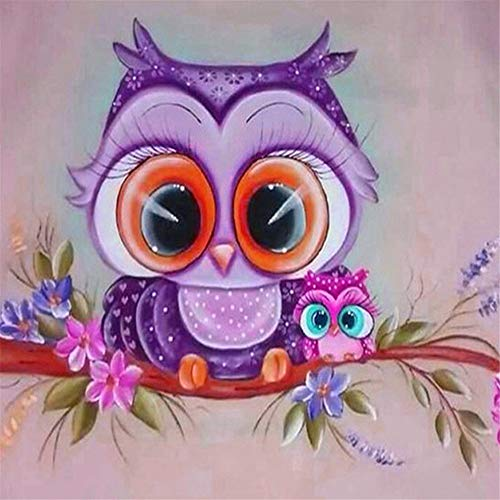 DIY 5D Diamond Painting Kit,Owl Print Full Drill Rhinestone Embroidery Paintings Diamond Painting Cross Stitch Art Crafts (C, 30X30cm) -