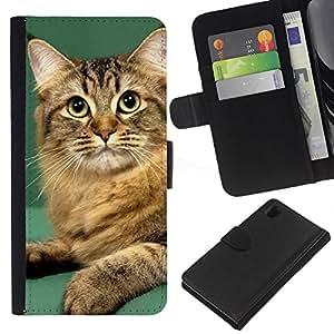 Orange British Curl Bobtail Manx Cat - la tarjeta de Crédito Slots PU Funda de cuero Monedero caso cubierta de piel Sony Xperia Z1 L39