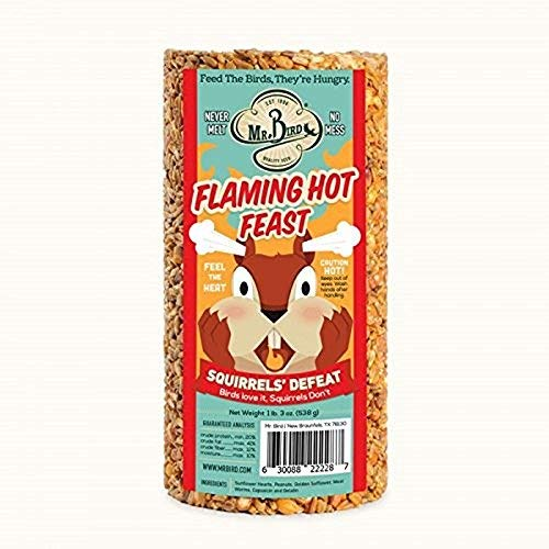 Mr. Bird Flaming Hot Feast Small Cylinder 19 oz. (Cylinder Bird Feeder)