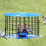 Bluebird Feeder - Includes Meal Worm Cup - Designed To Keep Squirrels Out