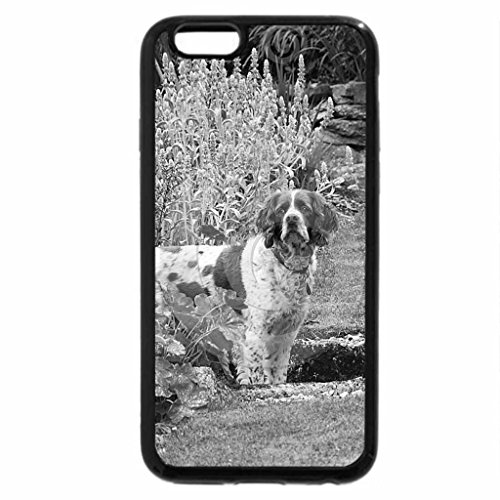 iPhone 6S Case, iPhone 6 Case (Black & White) - two dogs in a garden