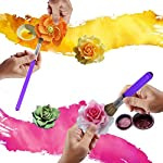 AK ART KITCHENWARE Cookie & Cake Decorating Brushes Set Bakeware Kitchen Utensil 14 The Decorating Brush Set can be used to paint cookies, fondant flowers, cakes and cupcakes with designs from impressionistic to detailed,and also can use to makeup and drawing The soft,synthetic bristles is approved to be 100% food grade material,ensuring your family completely safe After using,wash the brushes with warm water and a little dish-washing liquid,smooth the bristles and dry it