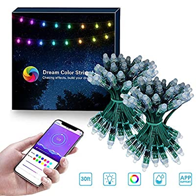 ELlight Outdoor String Lights, Dream Color LED String Lights with APP, Waterproof 30ft 100 LED Dimmable Color Changing Hanging Lights for Patio Wedding Party Holiday