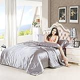Luxury 4-Piece Satin/Sateen Silky Bed Sheet Set Bedding Collection,Summer Duvet Cover Sets Flat Sheet Set-Silver Grey,Queen