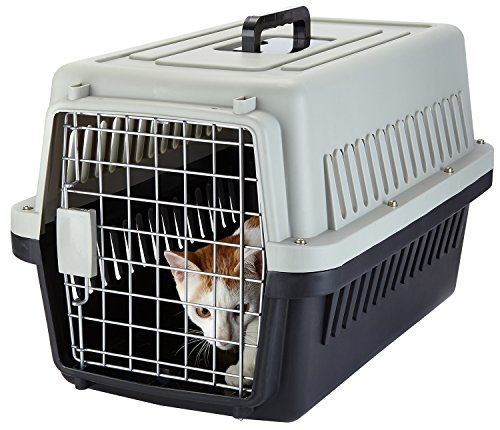 Yvettevans Portable Airline Approved Pet Kennel Cats Travel Cage Car Travel Vet Visit Dogs Carrier Crate Outdoor Kennel (S)