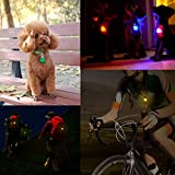 Morpilot 7Pcs Clip-On Dog & Cat Pet Collar LED