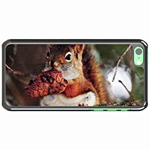iPhone 5C Black Hardshell Case squirrel branches Desin Images Protector Back Cover