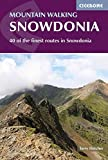 Mountain Walking in Snowdonia: 40 of the Finest Walks in Snowdonia (Cicerone Guides)
