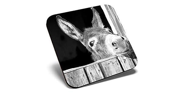 protecci/ón de mesa para cualquier tipo de mesa #40944 Gran posavasos cuadrado BW posavasos de calidad brillante divertido lindo burro animal caballo salvaje