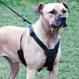 Sporn Nylon Non Pulling Dog Harness, Large/X-Large, Black, My Pet Supplies