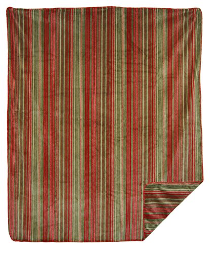 Denali Throw - Denali Home Collection by Monterey Mills 60-Inch by 70-Inch Double-Sided MicroPlush Throw, Sage Stripe/Sage