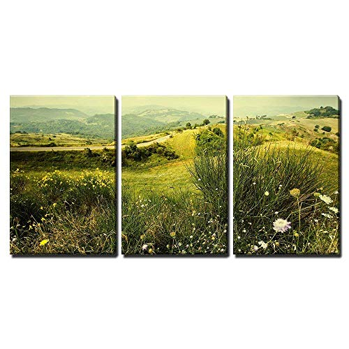 Framed Rhone Art (wall26 - 3 Piece Canvas Wall Art - Alpine Meadow Wild Flowers Mountains - Modern Home Decor Stretched and Framed Ready to Hang - 24