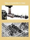 Brewsly Juicer Machines Easy to Clean, 2-Speed Slow