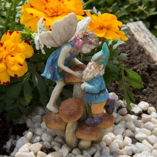 Miniature Fairy Garden Limited Edition Girl Fairy and Gnome on Mushrooms Codey and Cassey (Un Treaty On The Rights Of The Child)