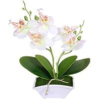 super1798 Borboleta Artificial Orquídea Vaso De Flores Bonsai Decoração De Jardim Em Casa Branco