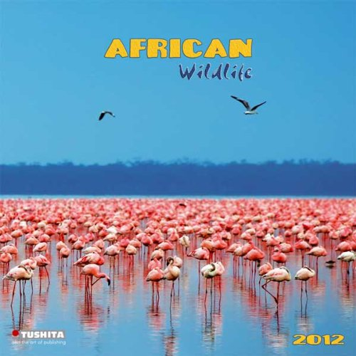 african-wildlife-2012-wonderful-world