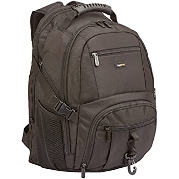 Amazon.com: AmazonBasics Explorer Laptop Backpack - Fits Up To 15 ...
