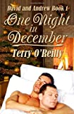 David and Andrew Book 1: One Night in December, Terry O'Reilly, 1467907502