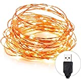 DesiDiya® USB Operated Copper String Decorative Fairy Lights Diwali Christmas Festival LED Fairy Lights (Warm White, 5 Meters, 50 LED's) (5 Meters)