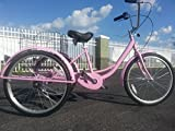 Best Adult Tricycles - SIX Speed Adult Tricycle Pink Review