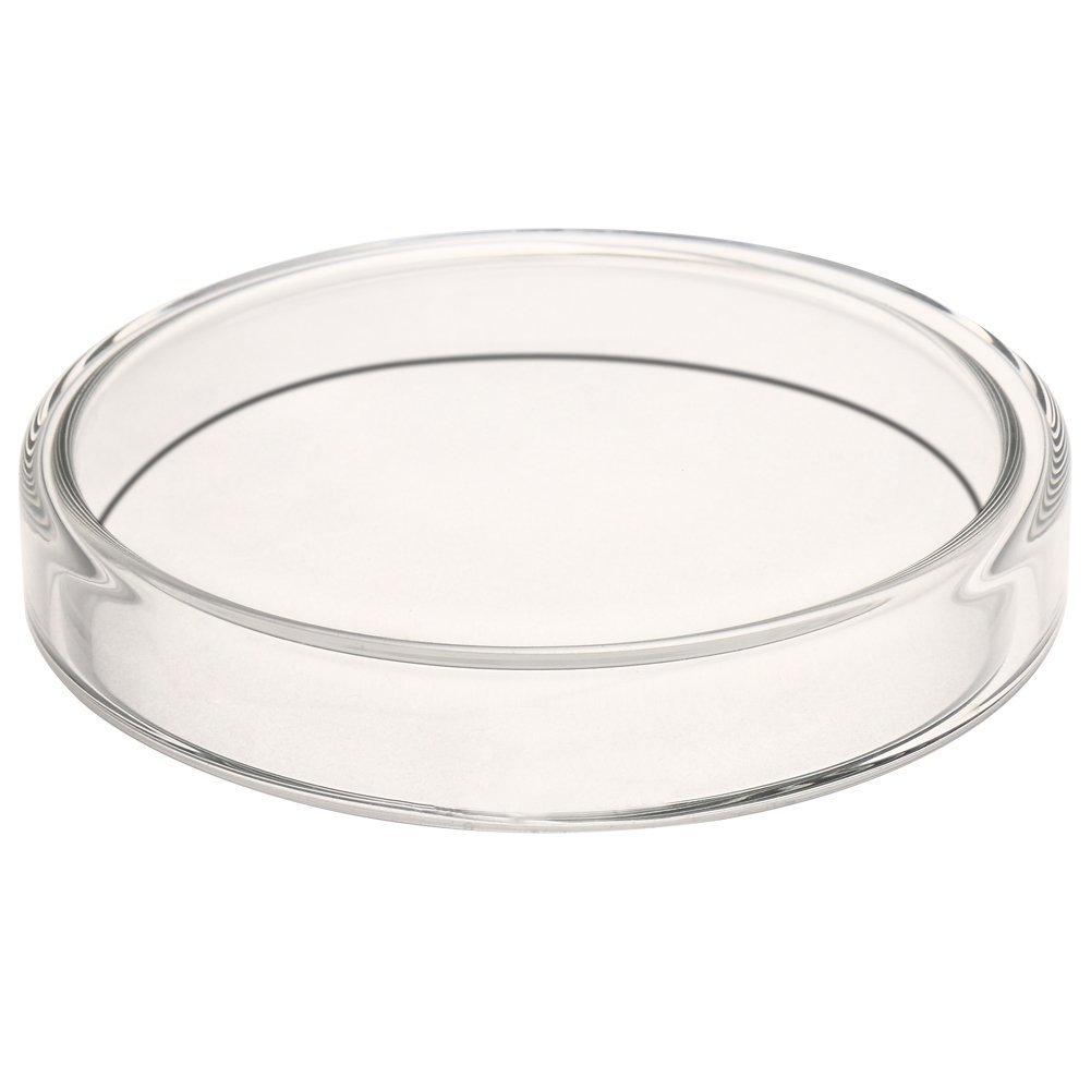 Glass Petri Dish Petri Plates Tissue Culture Plate 5 Pcs (90 mm) by Ronyes Lifescience