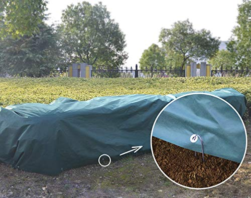 Agfabric Floating Row Cover & Plant Blanket Kit with Pins, 1.5oz Fabric for Frost Protection,Gardening, Harsh Weather Resistance& Seed Germination 8x20ft,Dark Green