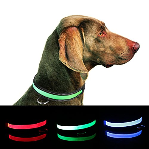 Collar Improved Visibility Safety Rechargeable product image
