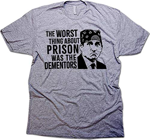 Daft Threads Prison Mike Dementors Office T-Shirt & Fact Sticker Heather Grey (Small)