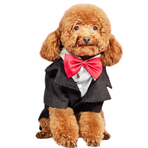 Alfie Pet by Petoga Couture - Tyson Formal Tuxedo with Red Bow Tie - Size: Medium