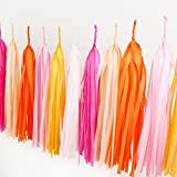 Tyoungg 16 Pcs DIY Tissue Paper Tassels Garland Kit Wedding Party Balloon Decor(Hot Pink, Pink, Orange, Light Pink, Apricot and Peach)