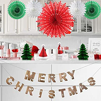 Christmas Party Decorations Gift Set Merry Christmas Banner tree hat for Birthday Baby Shower Bridal Birthday Christmas Event Office Mental Table Deco Hanging Paper fans Tassels Snow Garland Clover