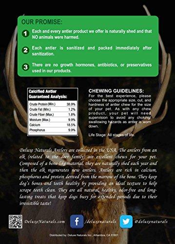 Deluxe Naturals Elk Antler Dog Chew, Split, Medium, 20-50 lb Dogs, 4 Piece by Deluxe Naturals (Image #5)