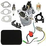 HIPA 0J25910112 Carburetor with Air Filter Tune Up Kit for...