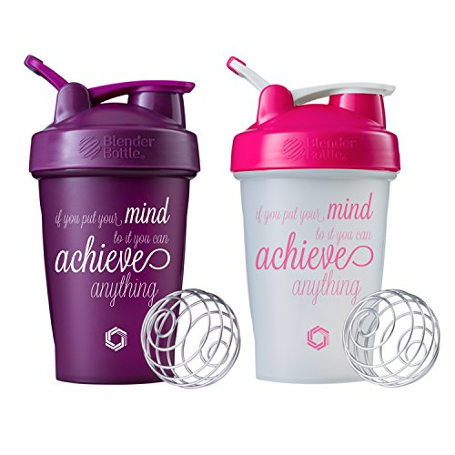 Achieve Anything Classic Blender Bottle Shaker Cup 2 Pack, 20oz Protein Shaker (Plum and Pebble 2pk)
