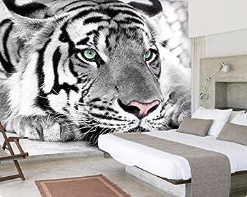 Photo Papier Peint Tiger Noir Et Blanc Animaux Murales Entree