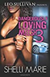 Dangerously Loving Meesh 3, Shelli Marie, 1495941213