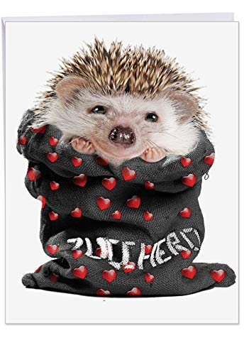 (Jumbo Valentine's Day Card: From The Hedge Bag-J Featuring a Sweet and Cuddly Hedgehog Peeking Out of a Sack with Hearts on it, With Envelope (Big Size: 8.5