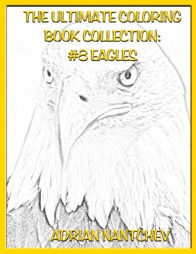 eagle coloring book - 6