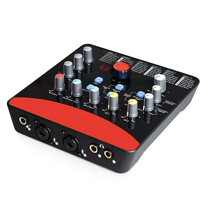 QWERTOUY Profesional de la Tarjeta de Sonido Externa 2 de Micro-In ...